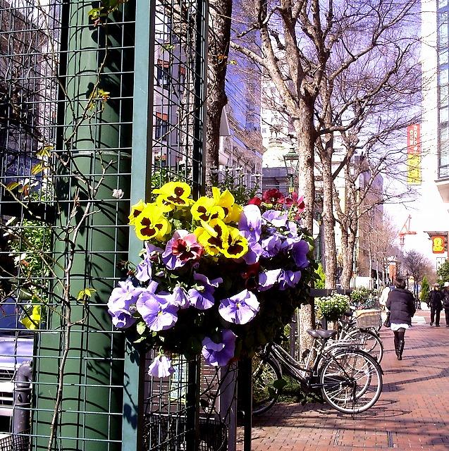 2011030019馬車道花飾り