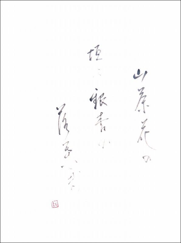 20170113-6204